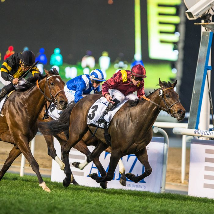 2017 – Dubai World Cup – Race – Dubai, UAE